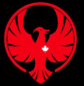 Firebird Consultants logo - large
